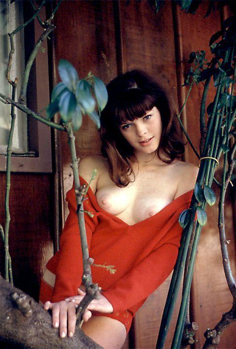 Ts Babe Lustful Rose 6